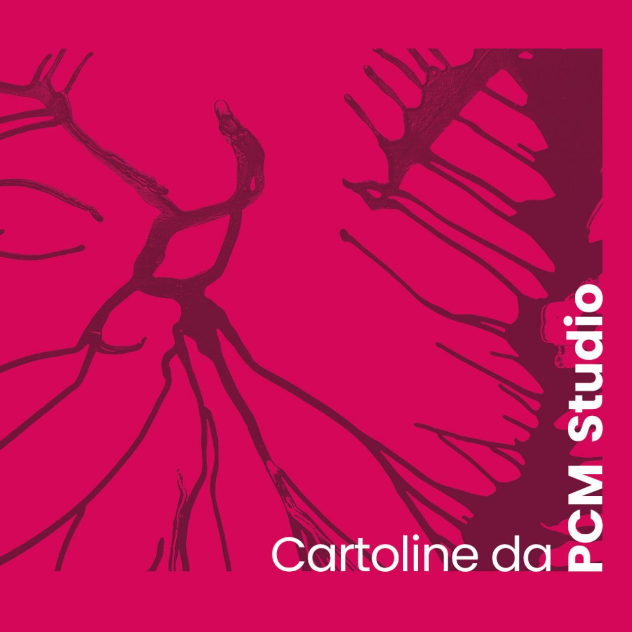 Cartoline                                   da PCM Studio