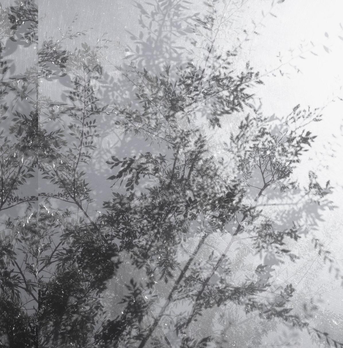 Luisa Lambri | AUTORITRATTO | PAC Padiglione d'Arte Contemporanea